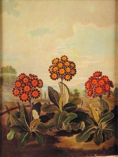 Fleurs Huile sur toile.