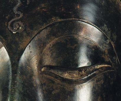 Importante tête de bouddha Bronze à patine brune, yeux incrustés d'argent. Thaïlande,...