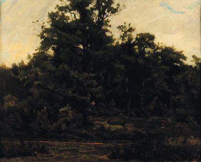 G. Allemand (1846-1888) Paysage de forêt Toile signée et datée en bas à droite: 84....