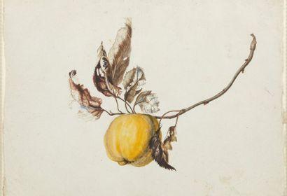 ATTRIBUÉ À EMMANUEL FRIES (1778 - 1852)