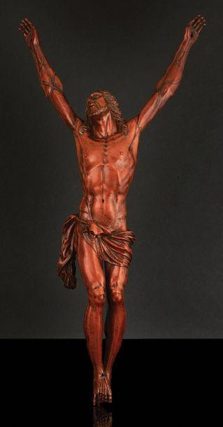 Grand Christ en buis sculpté. Tête levée...