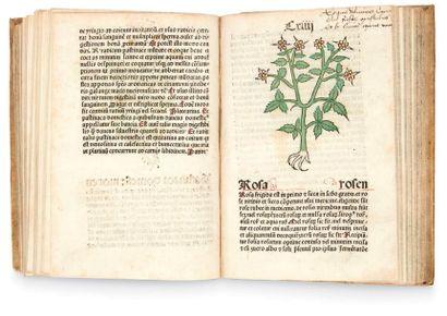 [HERBIER.] Herbarius Patavie impressus anno...