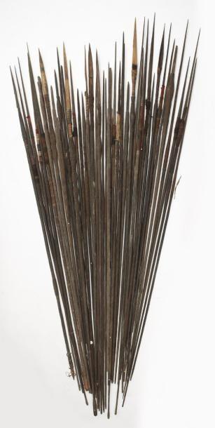 -10 lances variées à motifs animal et abstrait...