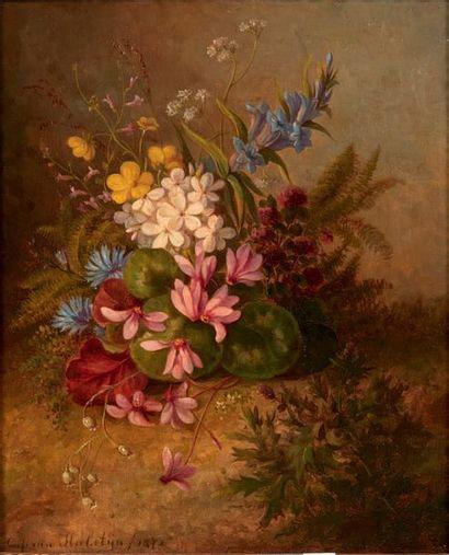 CORNELIS VAN HULSTIJN (1811-1879)