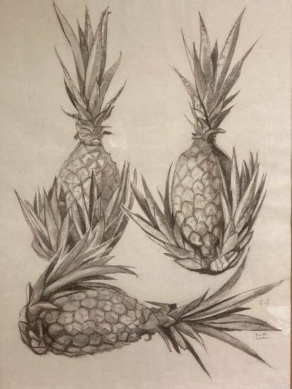 Lucette LARIBE (1913-2020).  Etude d'ananas,...