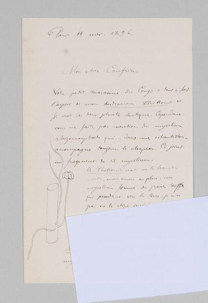 Narcisse Théophile PATOUILLARD (1854-1926),...