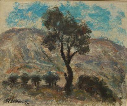 M. BOTTON, arbres et montagne, huile sur...
