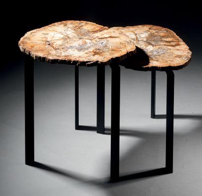 Paire de side-tables en bois pétrifié Piétement...