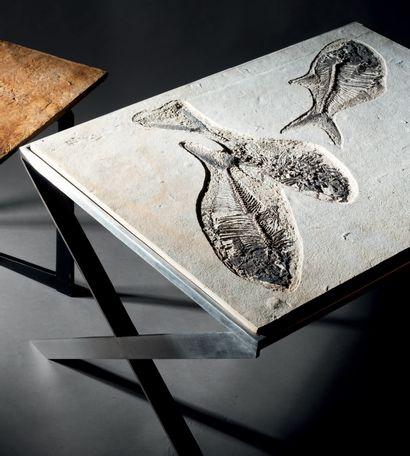 Table basse à plateau en pierre fossilisée...