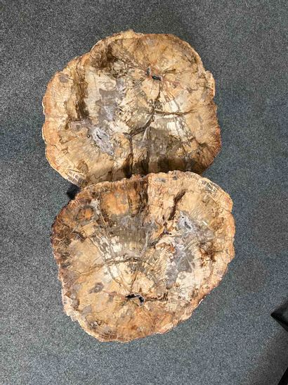Pair of side tables in petrified wood Metal base. H. 34 cm, top 40 x 47 cm H. 39...