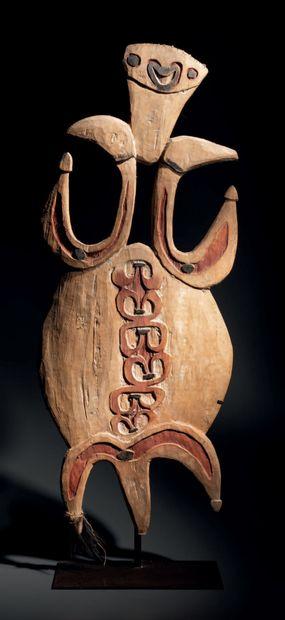 Figure Bioma, Golfe de Papouasie, Papouasie...