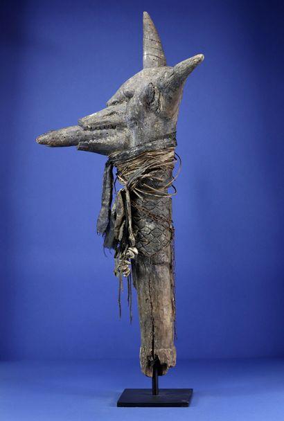 Impressionnant objet cérémoniel représentant une tête animale exubérante au sommet...