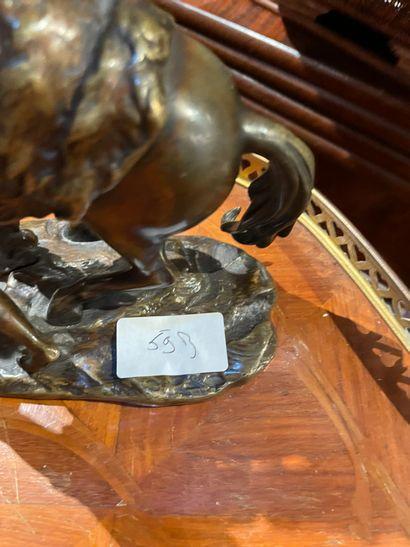 D'après Guillaume COUSTOU Cheval de Marly En bronze patiné