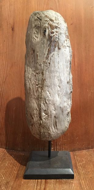 Piece of petrified wood Mounted on a base H. 46 cm with base