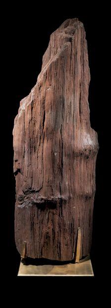 TRONC FOSSILE CRISTALLISÉ H. 115 cm - L....