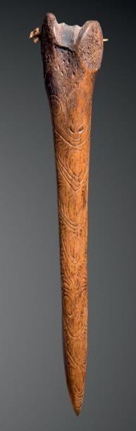 Dague, Lac Sentani, Papouasie Nouvelle-Guinée...
