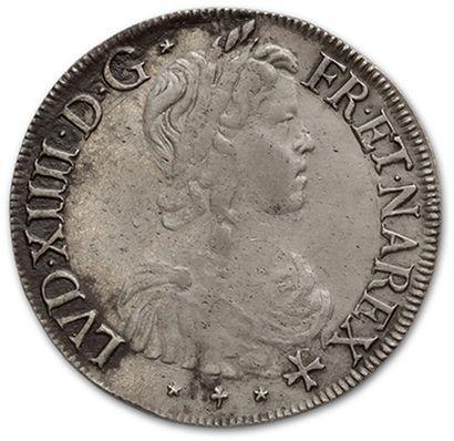 Écu de Navarre à la mèche longue. 1660. Saint-Palais. D. 1473. TB à TTB.