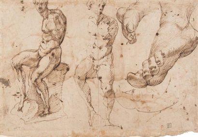 Ecole bolognaise, fin 16ème siècle Homme nu assis (recto); Etudes inspirées du torse...
