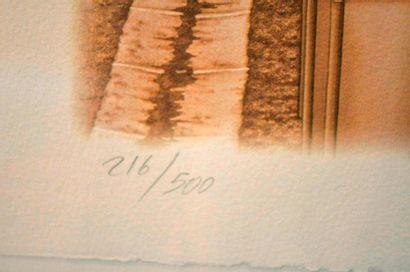 Lithographie encadrée sous-verre traité signée François Bruère n° 216/500  représentant...