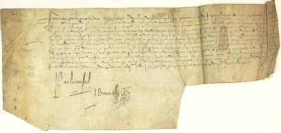 (HAUTE-MARNE. 1539) Parchemin (18 x 42) au...
