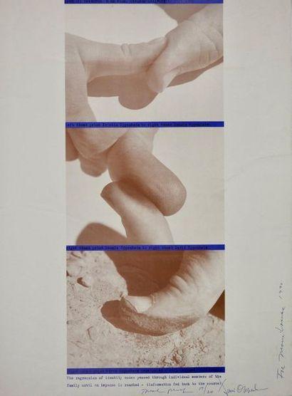 Dennis Oppenheim (1938 - 2011)  Sans titre...