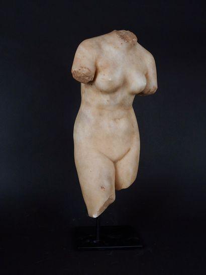 Beau corps féminin nu aux formes gracieuses...