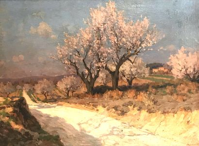 Eugène de BARBERIIS (1851-1937 )  Paysage...