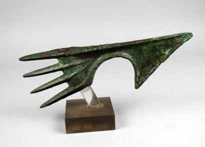 Hache digitée de très grande taille  Bronze...