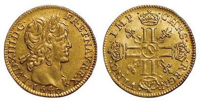 Louis XIII. Demi-Louis d'or mèche courte...