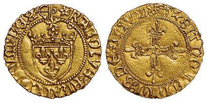 Charles VIII. Demi Ecu d'or au soleil. Bayonne....