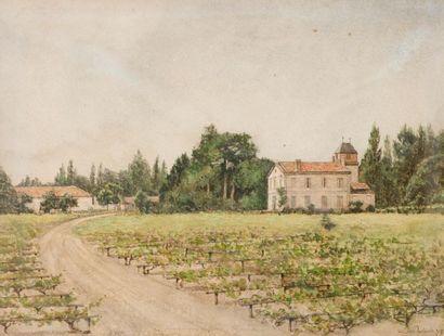 Louis DUTASTA (Né en 1851) Vignoble de la...