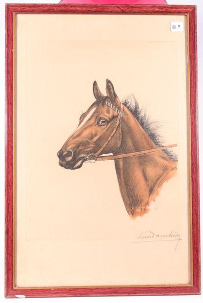 D'après Léon DANCHIN  Tête de cheval  Lithographie...