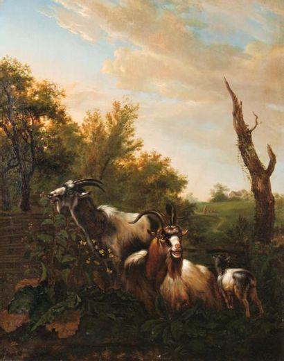 Ecole hollandaise VERS 1800, suiveur d'Abraham...