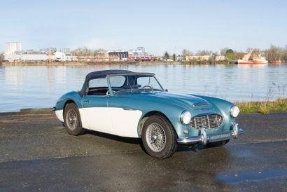 AUSTIN HEALEY Roadster 100/6 2 places type BN6 du 01/01/ 1959, n° de série BN6L4564...