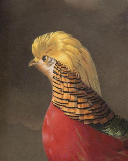 JACQUES BARRABAND (1768-1809) ET MANUFACTURE DE DIHL ET GUERHARD A PARIS Peinture...
