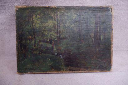 Ch. SAUVAGEOT (XIXe siècle). Promenade dans...
