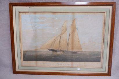 """Thomas Goldsworthy DUTTON (1819-1891). Le """"CAMBRIA"""". Lithographie (piqûres). 36..."""