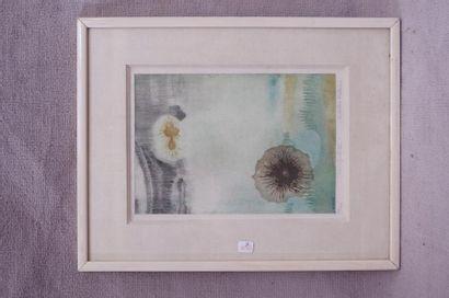 Colette PETTIER (XX). Fleurs. Lithographie...
