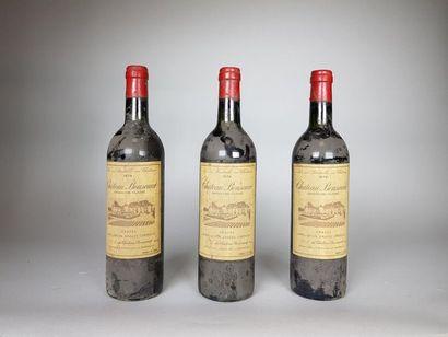 3 bouteilles de CHÂTEAU BOUSCAUT Rouge (2...