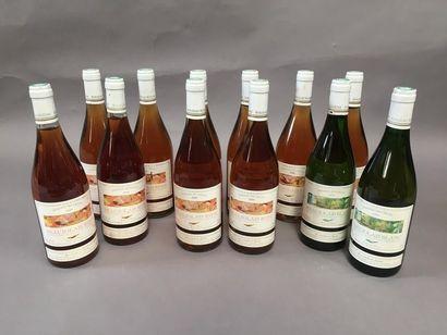 8 bouteilles Beaujolais rosé domaine des...
