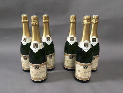 6 bouteilles de Mousseux domaine des crêtes...