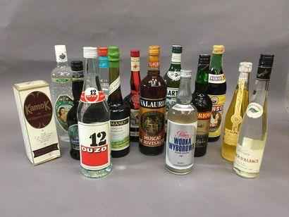 Ensemble de 14 bouteilles d'alcools dive...