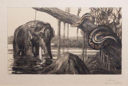 Paul JOUVE (1878-1973) Eléphant et python. Lithographie originale, en couleurs,...