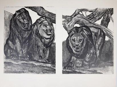 André DEMAISON (1883-1956). La vie des bêtes qu'on appelle sauvages. Illustrations...