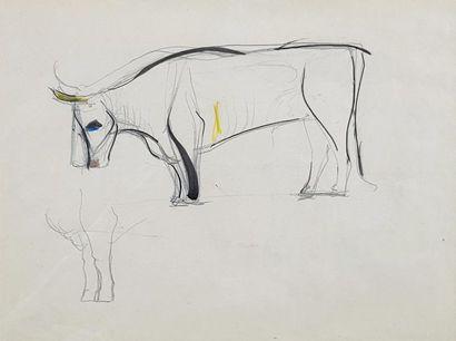 André DERAIN (1880-1954) Etude de taureau....