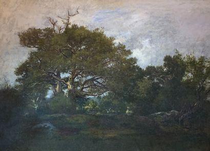 Léon RICHET (1847-1907)  Vue de la forêt...