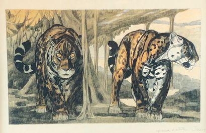Paul JOUVE (1878-1973) Deux jaguars. Lithographie...
