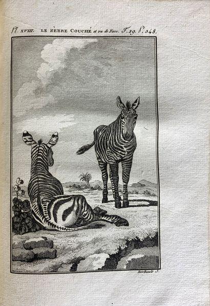 Leclerc de BUFFON. Histoire naturelle générale...