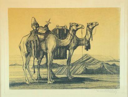 Jean DURAND (1894-1977) Chameaux au campement,...