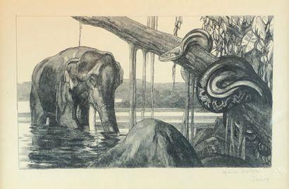 Paul JOUVE (1878-1973) Eléphant et python. Lithographie...